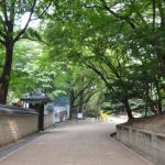 足が痛い祖母と行く韓国旅行2011(4日目)